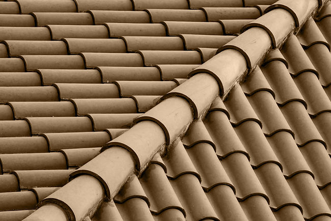 Brown Roof