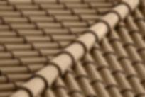 Brown Dach