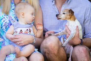 Dogs Love Their Families-2.JPG
