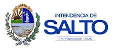 Logo IdeS 2020-2025.jpeg