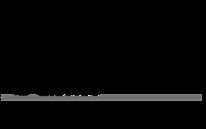 Logo_Minerva_negro.png