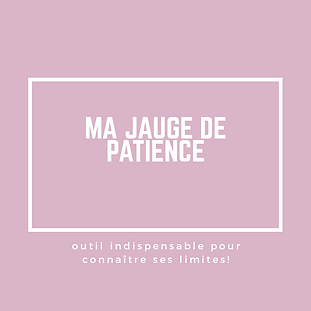ma_jauge_de_patience.png
