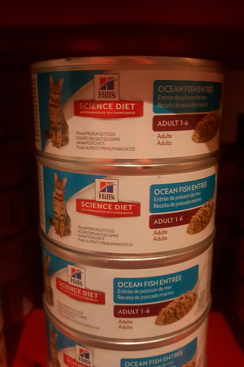 Hills Science Diet Ocean Fish Entree cans 156g