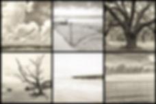 Fine Art Collage.jpg