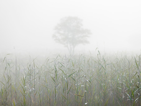 Scottish Landscape Photographer of the Year