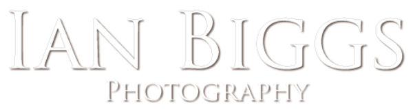 Ian Biggs web.jpg