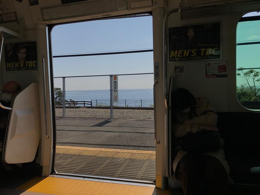 東海道を普通列車で行く。駿河湾が見えてきた。