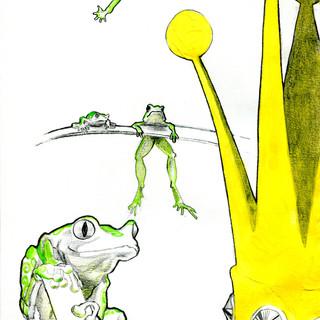 King of frogs/ Rey de ranas.