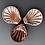 Thumbnail: Shell Dipping Bowls 1
