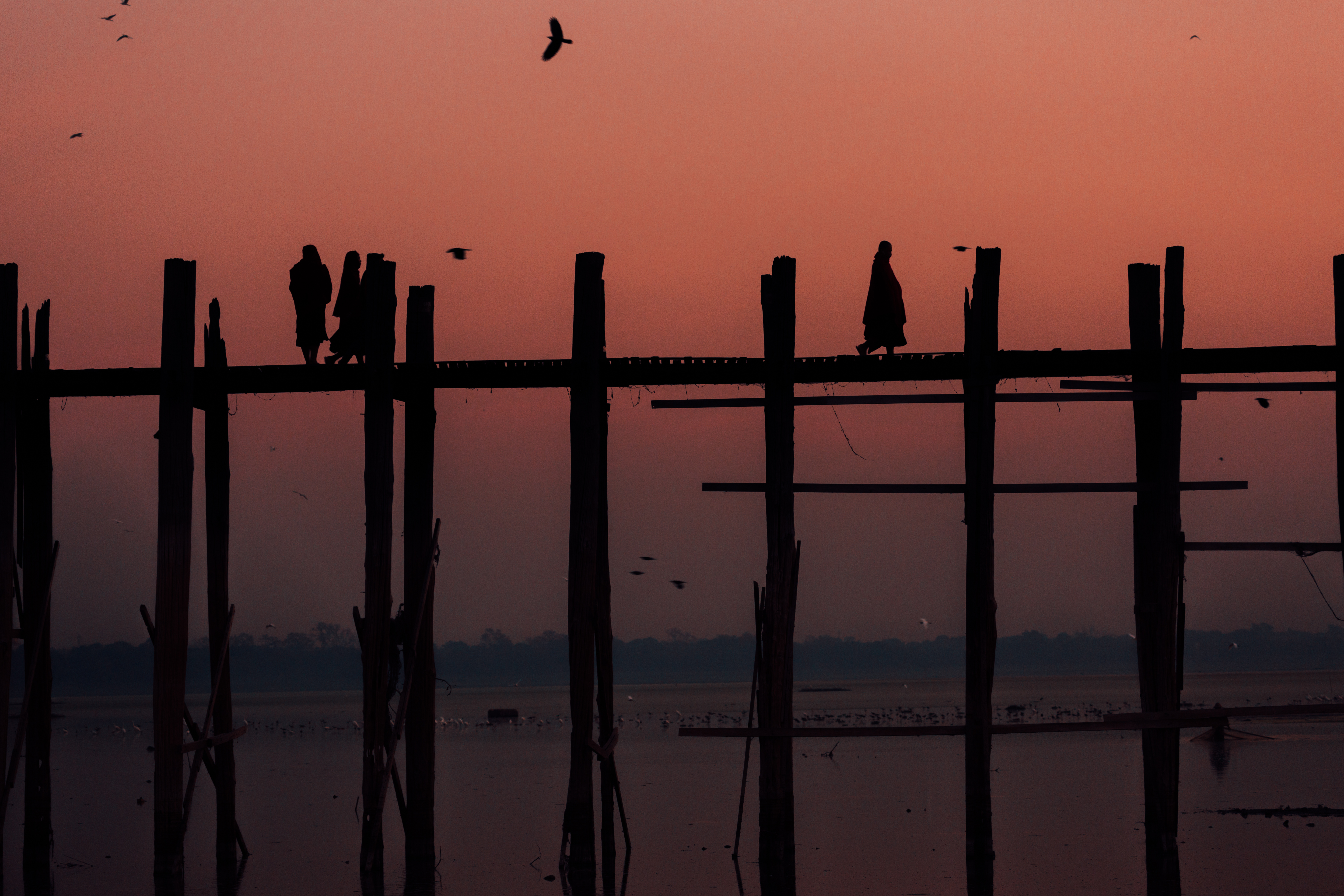 silhouette_of_people_standing_on_wooden_