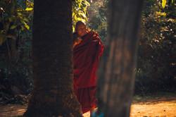 man_in_red_hoodie_standing_beside_tree-s