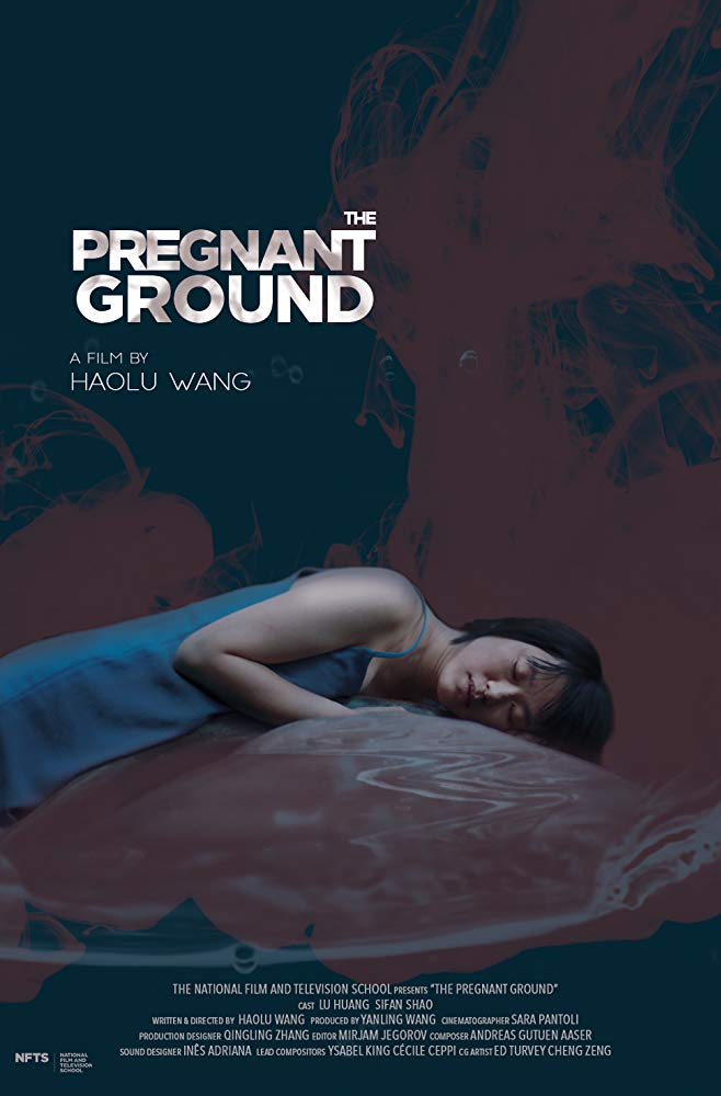 Pregnant Ground (2019) - NFTS