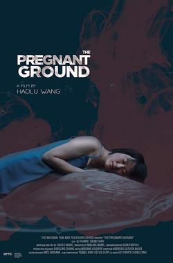 Pregnant Ground (2019) - NFTS