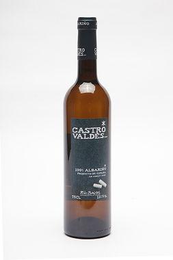 CASTRO VALDES.jpg