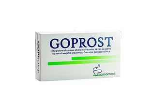 GOPROST 1.jpg