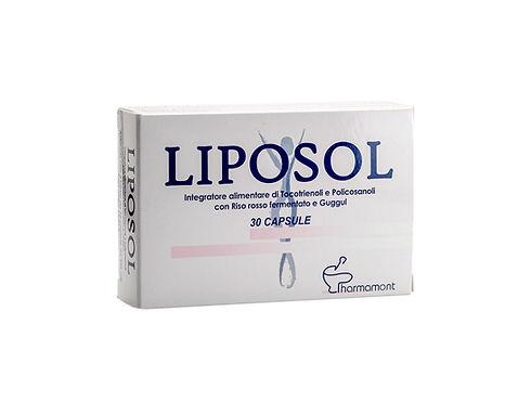 LIPOSOL 1.jpg