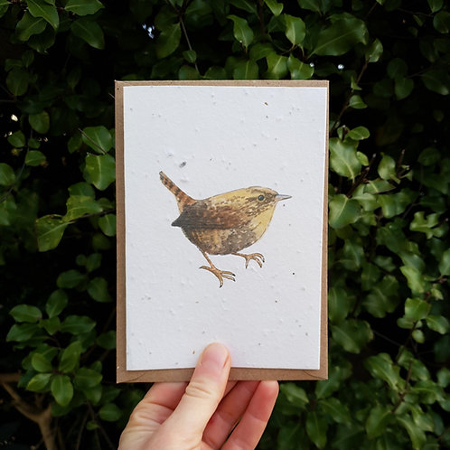 Wren wildflower seed card