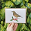 Thumbnail: Redwing Wildflower seed card