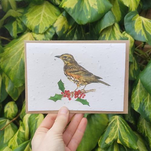 Redwing Wildflower seed card