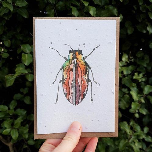 Red beetle wildflower seed card