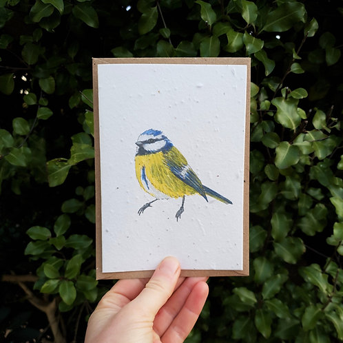 Blue tit wildflower seed card