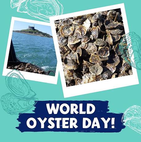 oyster-line-drawing-instagram-social-media-sarah-dowling-bristol-illustrator