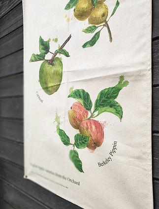 orchard-teatowel-close-up-sarah-dowling-bristol-illustrator_edited_edited.jpg