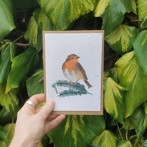 Robin Wildflower seed card