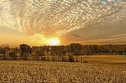 scenery-2690022_640.jpg