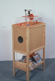 Circular fever Hamster powered record player