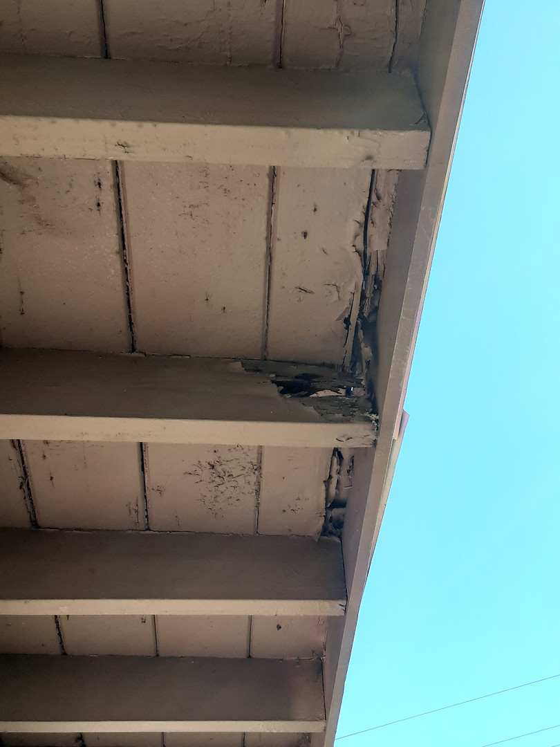Eave Inspection