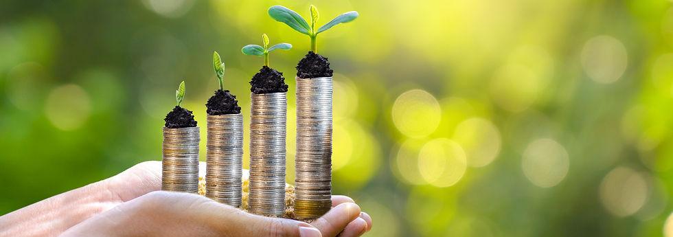 hand-coin-tree-tree-grows-pile-saving-mo