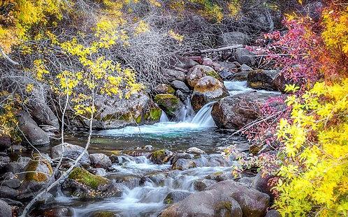 Waterfall Fall Colors
