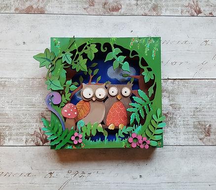 Owl Box Picture