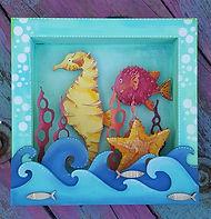 Seahorse Box Frame