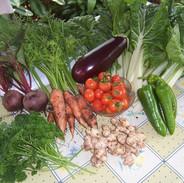 Organic vegies.jpg