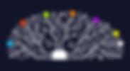 logo-schiffmann.jpg