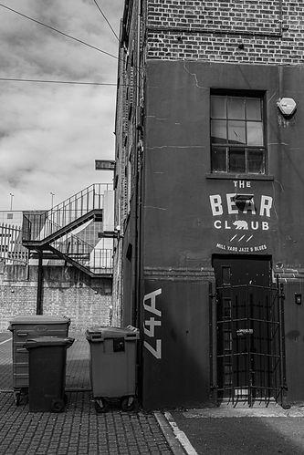 The Bear Club.jpeg