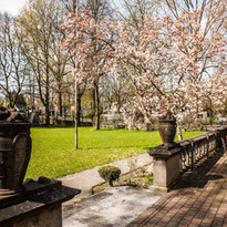 Villa_Mignon_Hamburg-außen_Terrasse Früh