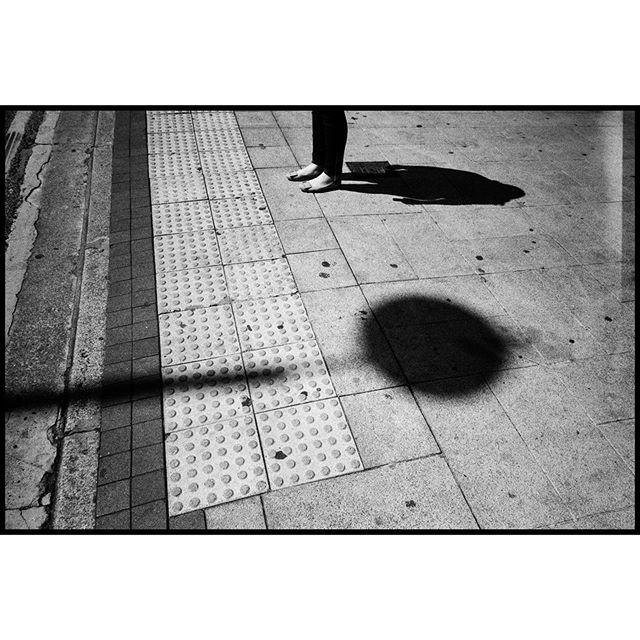 Projections ▪️▪️▪️▪️▪️▪️▪️▪️▪️▪️▪️▪️ 🎞