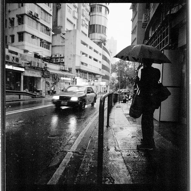 Rainy day_▪️▪️▪️▪️▪️▪️▪️▪️▪️▪️▪️▪️_🎞 _k