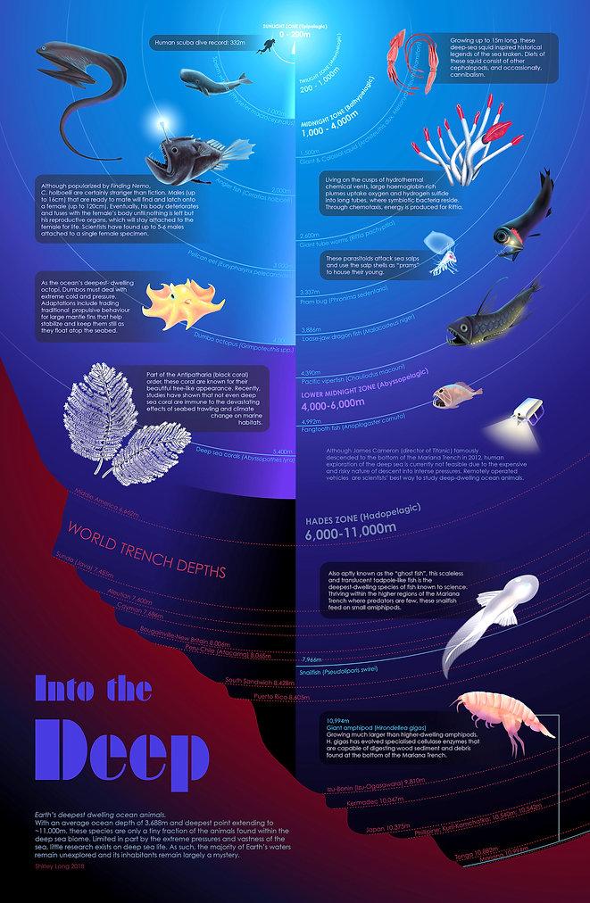 Deepsea Animals Poster