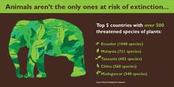 International Day for Biodiversity