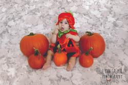 Fall Baby Pumpkin