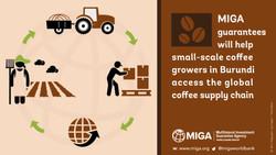 MIGA guarantees for Burundi coffee