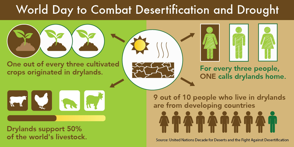 Desertification tw1