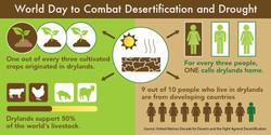 Desertification tw1