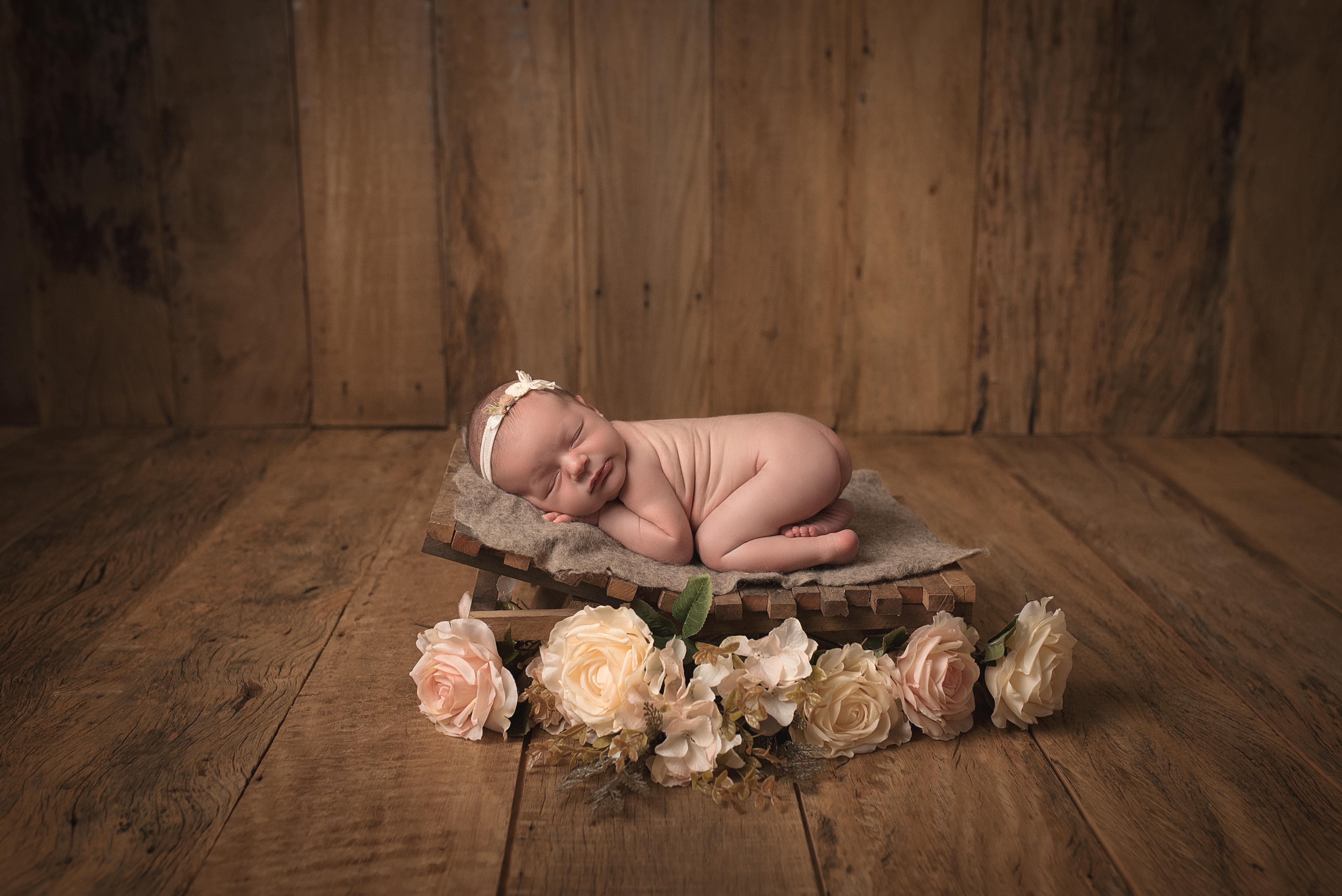 newborn araras