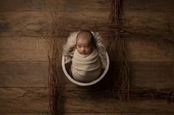 Newborn Book Recém Nascido