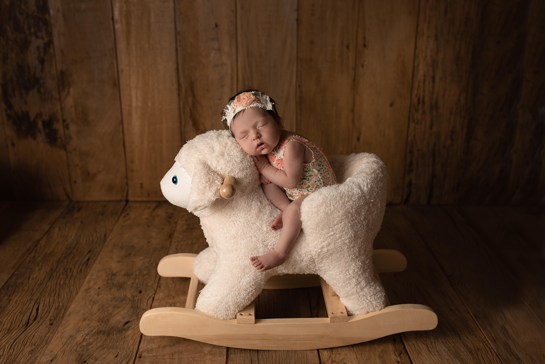 workshop newborn campinas